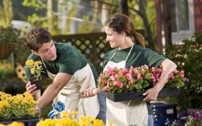 Pandémie, la FGTA-FO interpelle ce jour les employeurs des jardineries et animaleries