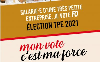 Comment voter aux élections TPE du 22 mars au 6 avril ?